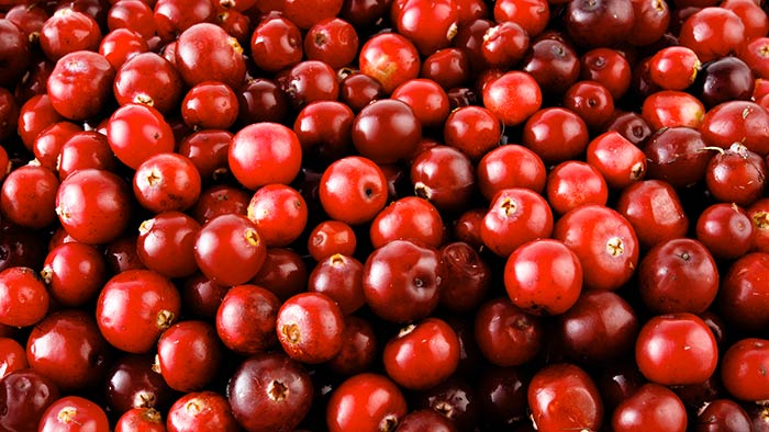 Cranberry Power